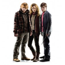 Harry, Hermione, and Ron Harry Potter 7