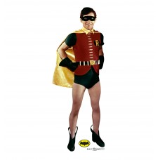 Robin (1969 TV Series - Batman and Robin)