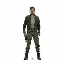Captain Cassian Andor™ (Rogue One)
