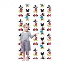 Mickey and Minnie Step and Repeat